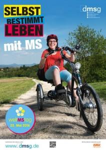 weltMStag2016_Plakat_DMSG klein